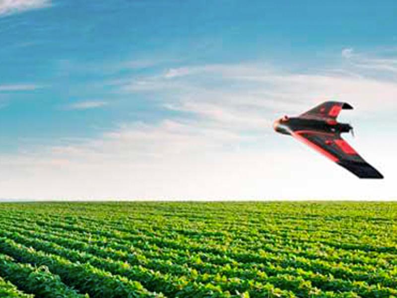 Curso / Taller: Tecnología en la Agricultura